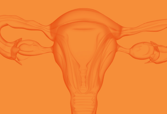 attikourismedical_cyprus_insightec_uterus